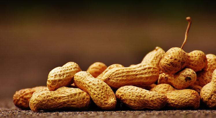 Как арахис стал популярным? Выращивание и применение арахиса