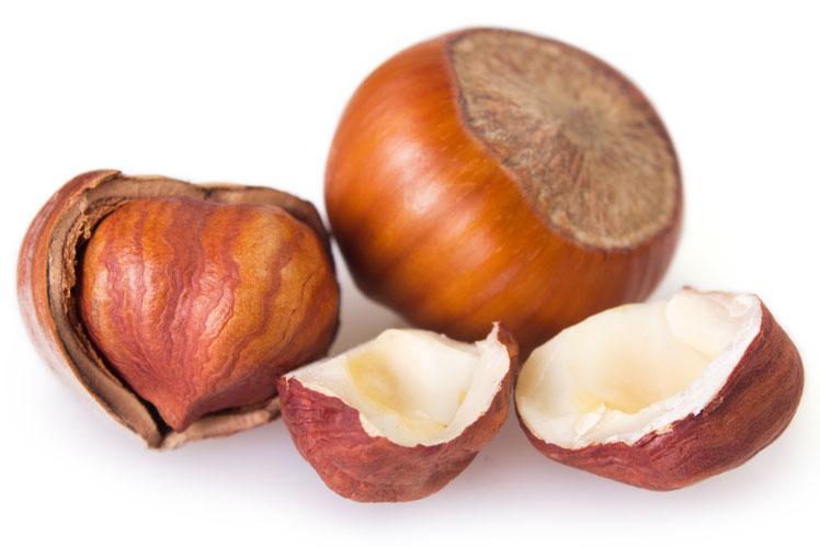 Интересные факты о лесных орехах
