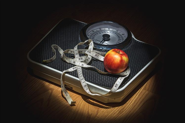 сайт о диетах и правильном питании